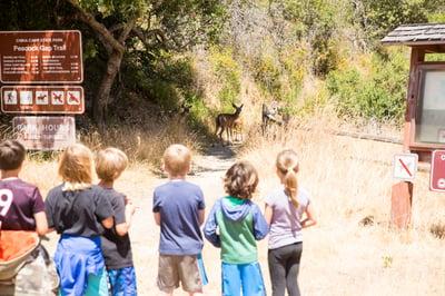 kids-hiking-outdoors