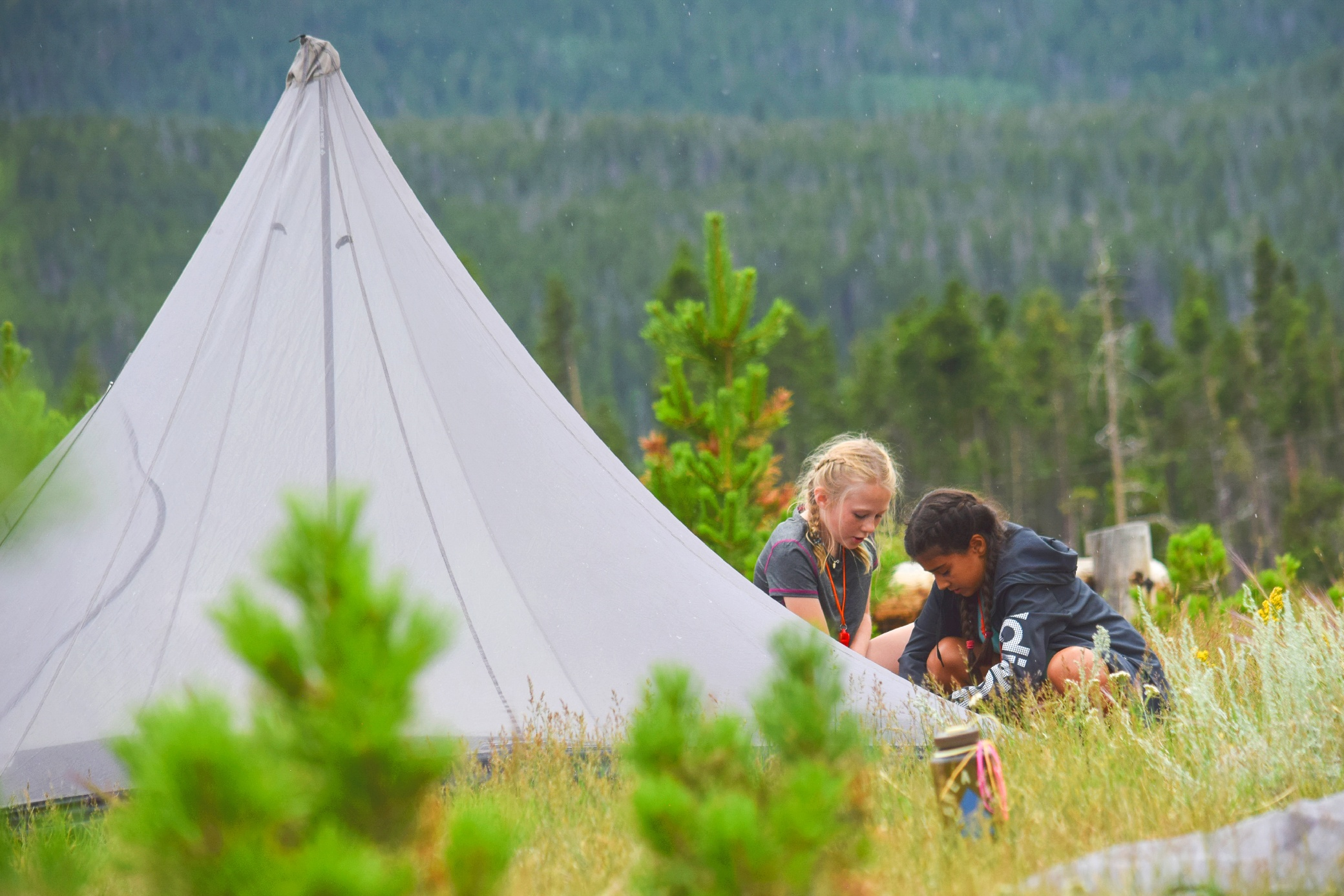 kids camping summer camp